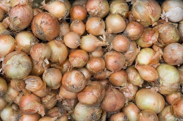 Variedad de cebollas en el mercado