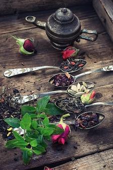 Variedad de la colección de té de hierbas