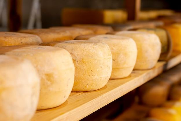 Variedad de queso molde con primer plano