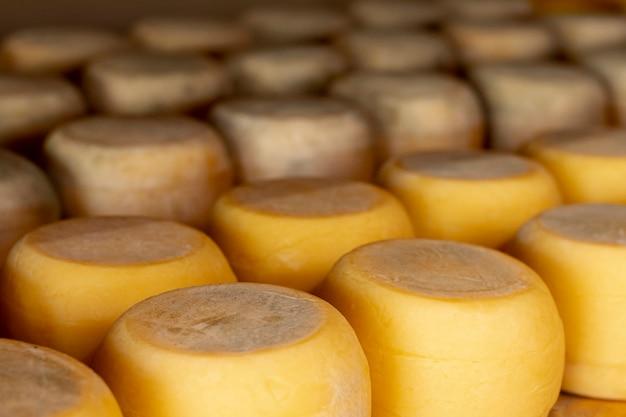 Variedad de ruedas de queso rústico.