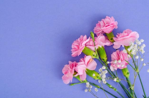 Varios claveles rosados frescos. foto