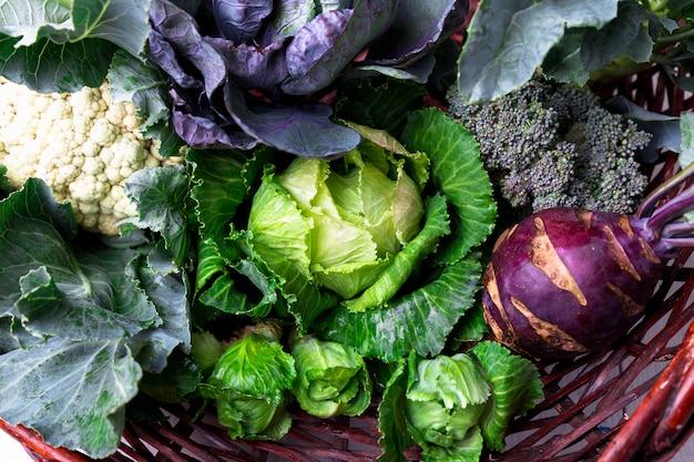 Varios de coliflor col brócoli