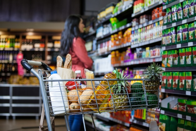 Varios comestibles en carrito de compras