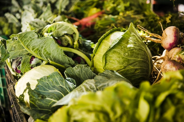 Varios vegetales frescos a la venta en el mercado de la tienda de comestibles