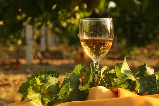 Vaso con vino blanco en viñedo en mesa antigua