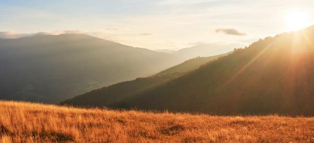 La vegetación de las tierras altas, un verano modesto y colores inusualmente hermosos, florece en otoño, antes del clima frío. arándanos rojo brillante, verde bosque de coníferas, naranja buk- montañas sinie- encanto fantástico.