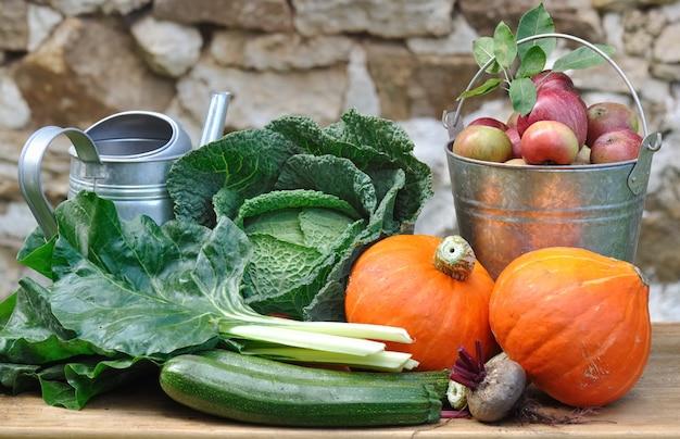 Vegetales y frutas de temporada y rústicos.