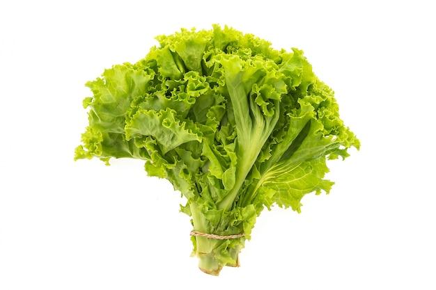 Vehículo verde fresca y natural saludable
