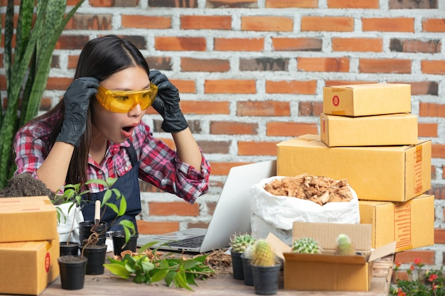 Venta de plantas en línea; mujeres emocionadas mientras usan laptop
