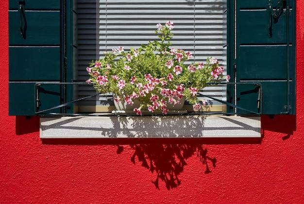 Ventana con persiana verde y flores en la maceta. yo