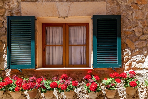 Ventana con persianas abiertas y macetas florecientes, ventana en flores