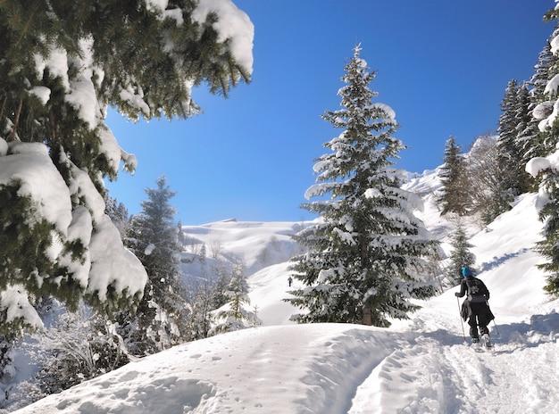 Ver en la espalda excursionista solo escalando montañas nevadas con raquetas de nieve