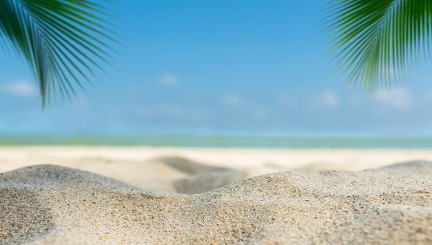 Verano de playa de arena con espacio libre de hoja de palmera borrosa