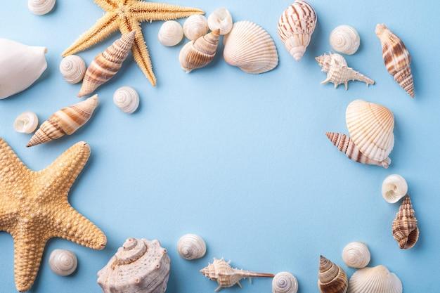Verano textura copia espacio estrella de mar concha, vista superior