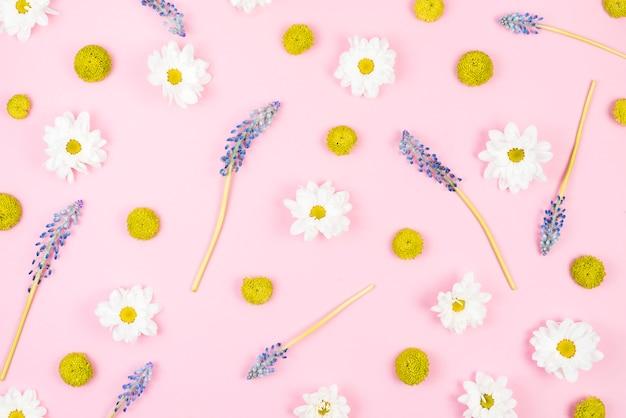 Verde; flores blancas y moradas sobre fondo rosa.
