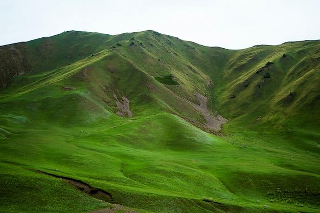 Verdes laderas de montañas, picos de montañas cubiertas de vegetación.