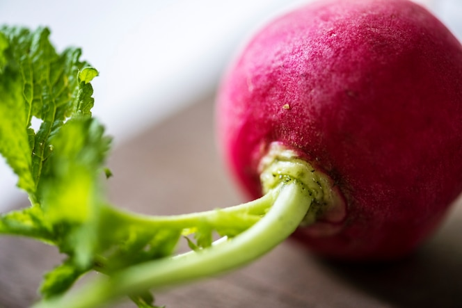 Verdura fresca de rábano rojo