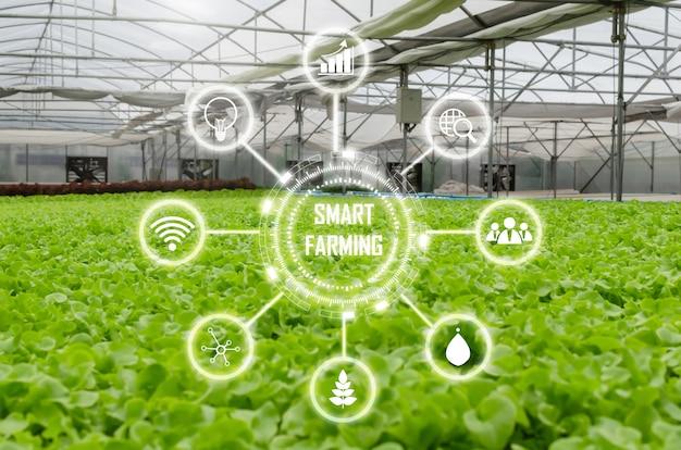 Las verduras de lechuga verde fresca hidropónica orgánica de interior producen en vivero de invernadero con icono visual, negocio agrícola, agricultura inteligente, tecnología digital y concepto de comida saludable