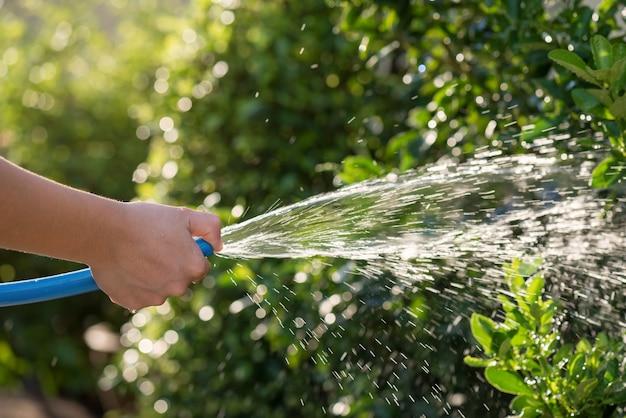 Verter el agua en el jardín con una manguera de goma