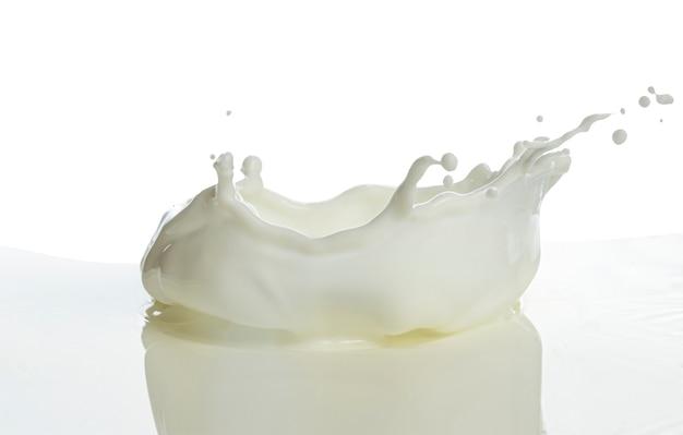 Verter la leche splash aislado fondo blanco.