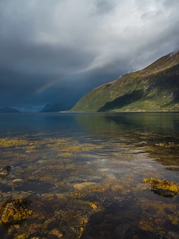 Vertical del musgo en el agua transparente del lago y un arco iris en el cielo nublado