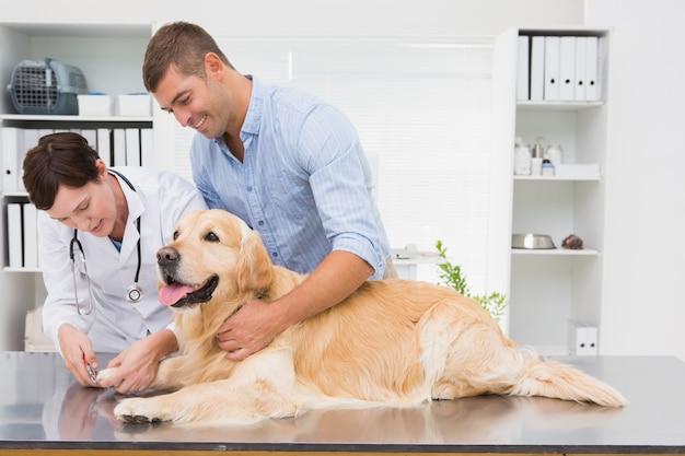 Vet usando cortauñas en un perro con su dueño