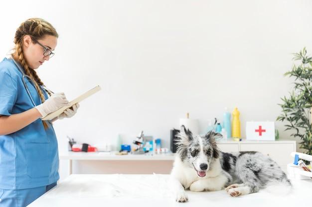 Veterinario femenino escribiendo en el portapapeles con el perro sentado en la mesa en la clínica