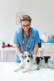 Veterinario de sexo femenino sonriente que examina el perro que miente en la tabla