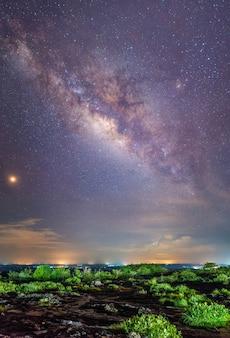 Vía láctea. fantástico árbol espacial de paisaje nocturno
