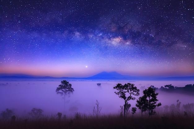 Vía láctea y niebla en el parque nacional thung salang luang