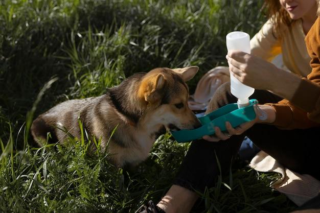Viajeros con lindo perro de cerca