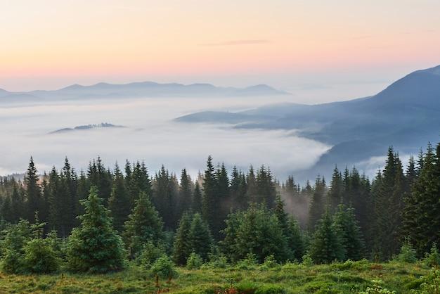 Viajes, trekking. paisaje de verano: montañas, hierba verde, árboles y cielo azul.