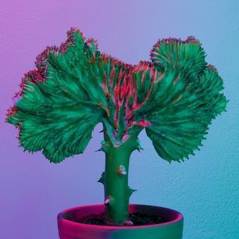 Vibraciones de moda de cactus synthwave. arte creativo y conceptual de plantas.
