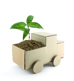 La vida de semillas delicada desarrollar la agricultura