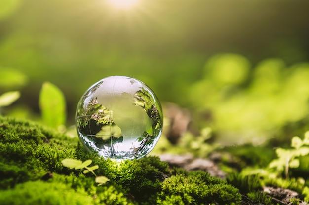 Vidrio de globo de cristal descansando sobre piedra de musgo con sol en la naturaleza forset. concepto de medio ambiente ecológico