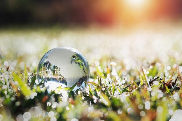 Vidrio de globo sobre la hierba verde con sol. concepto de medio ambiente ecológico