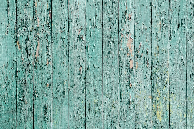 Vieja textura de cerca de color menta de madera rústica con pintura descascarada.