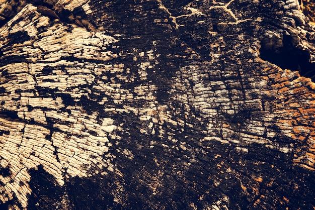 Vieja textura de madera de tocón de madera agrietada