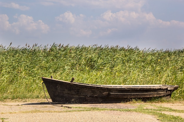 Viejo barco de pesca contra cañas