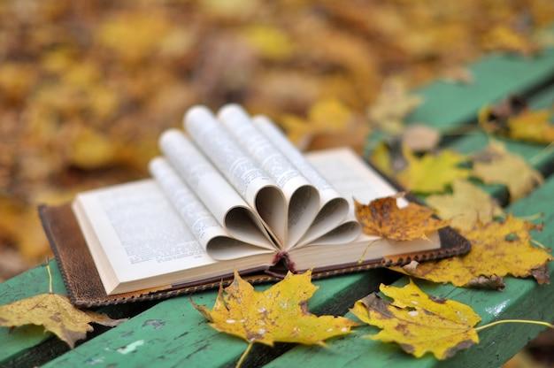 Viejo libro está acostado en un banco con hojas caídas en el parque de otoño