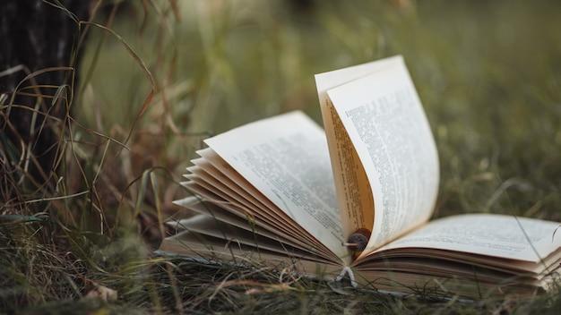 Viejo libro se encuentra en la hierba en el parque