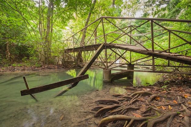 Viejo puente de madera en el bosque y el pequeño río que pasa por debajo