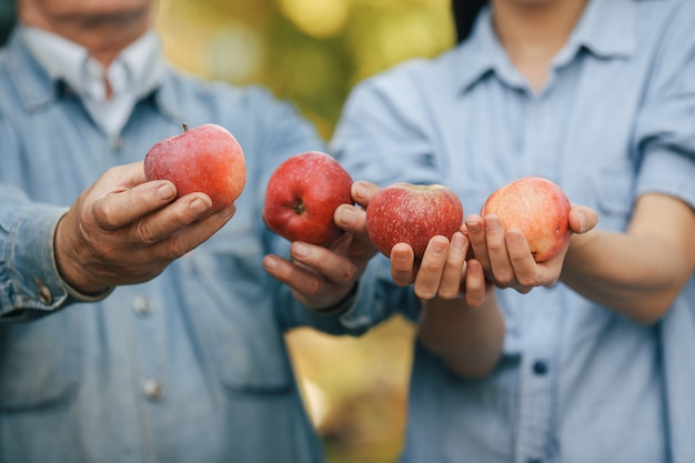 Viejo senior de pie en un jardín de verano con manzanas