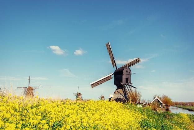 Los viejos molinos de viento holandeses saltan del canal en rotterdam. holanda.