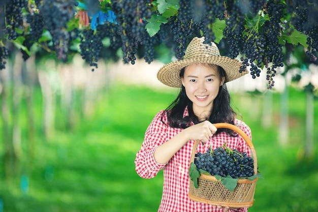 Viñedos que sonríen y disfrutan de la cosecha.