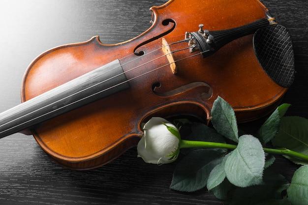 Violín y rosa sobre negro