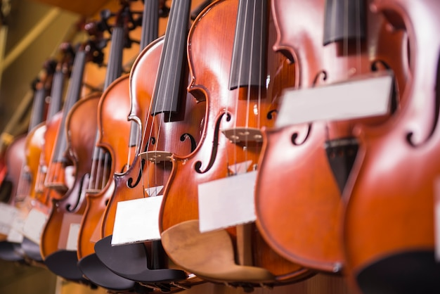 Los violines están colgados en la pared en la tienda.