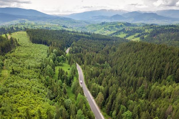 Vista aérea de arriba hacia abajo del sinuoso camino forestal en bosques de abetos de montaña verde.