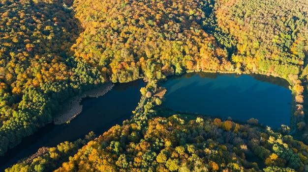 Vista aérea de aviones no tripulados del bosque con árboles amarillos y hermoso paisaje del lago desde arriba, kiev, bosque goloseevo, ucrania