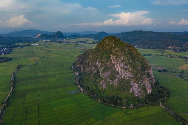Vista aérea del campo de tierras de cultivo / riice en tailandia